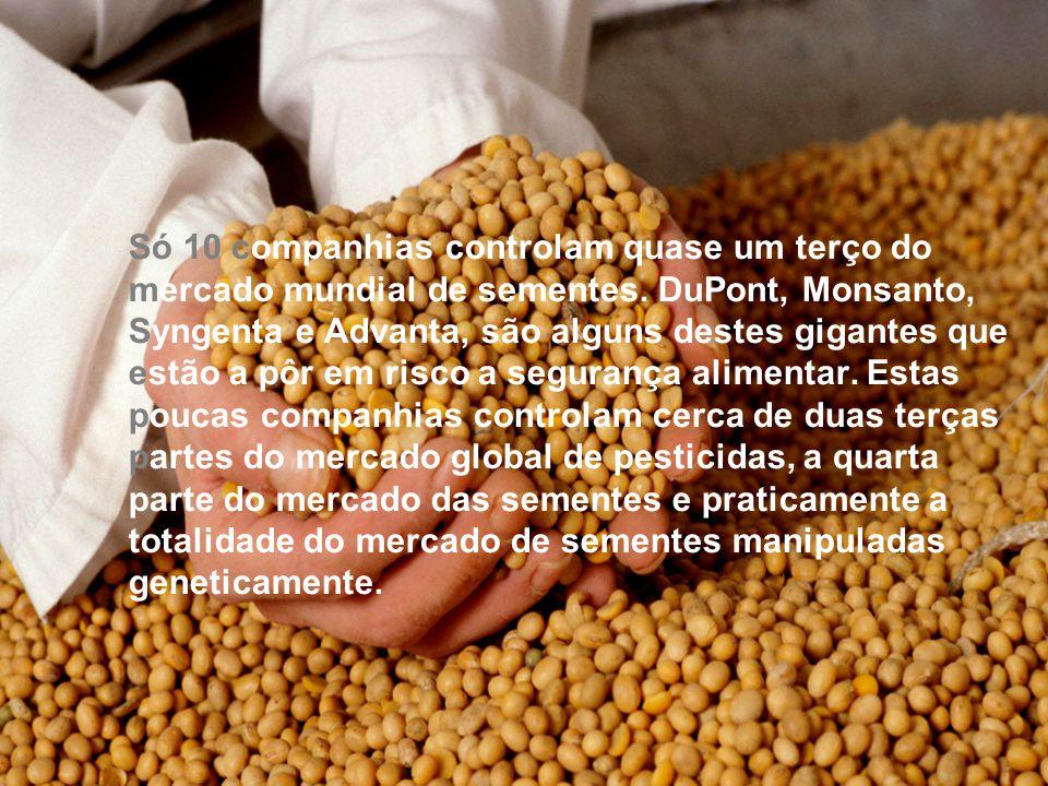 O que é a empresa Monsanto: Criada em 1946 e implantada hoje em 46 países, é uma das maiores empresas no sector de sementes e pioneira em biotecnologia.