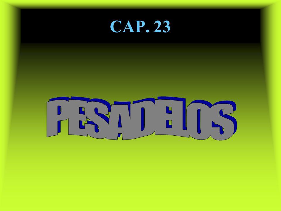 CAP. 23