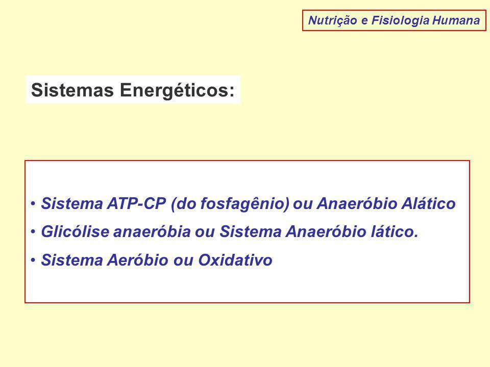 Nutrição e Fisiologia Humana Sistemas Energéticos: Sistema ATP-CP (do fosfagênio) ou Anaeróbio Alático Glicólise anaeróbia ou Sistema Anaeróbio lático.