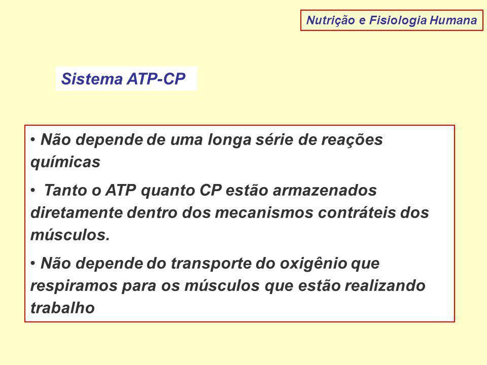 Nutrição e Fisiologia Humana Sistema ATP-CP Não depende de uma longa série de reações químicas Tanto o ATP quanto CP estão armazenados diretamente den