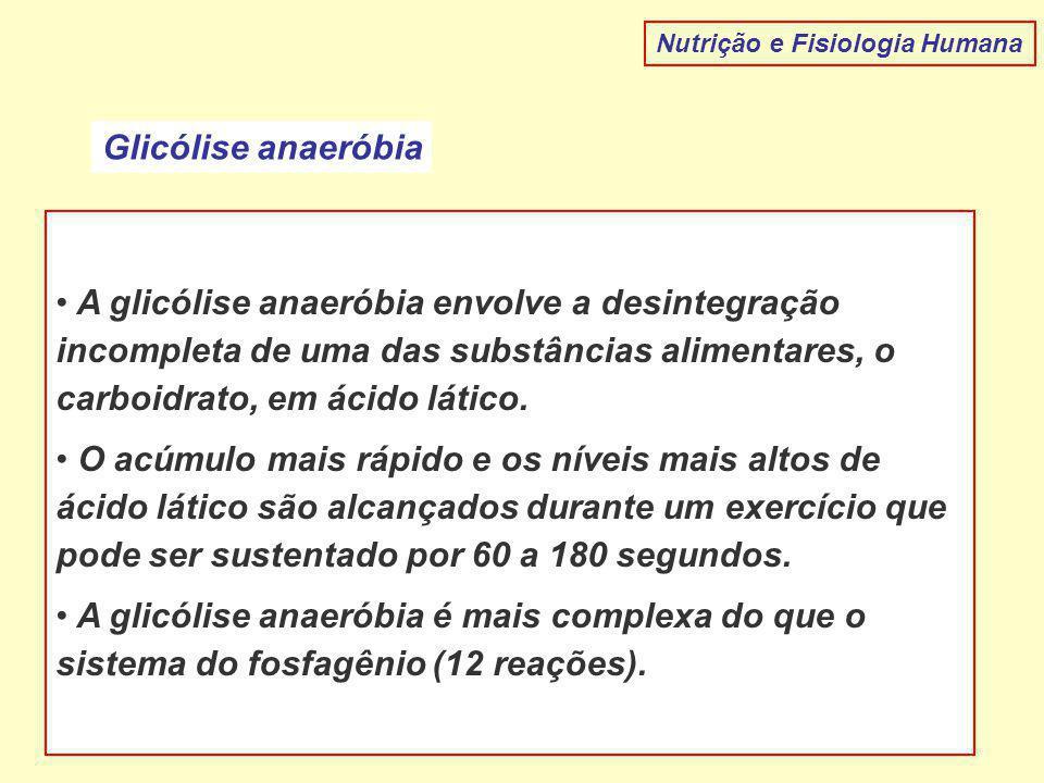 Nutrição e Fisiologia Humana Glicólise anaeróbia A glicólise anaeróbia envolve a desintegração incompleta de uma das substâncias alimentares, o carboidrato, em ácido lático.