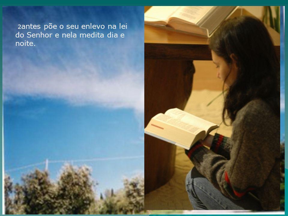 2 antes põe o seu enlevo na lei do Senhor e nela medita dia e noite.