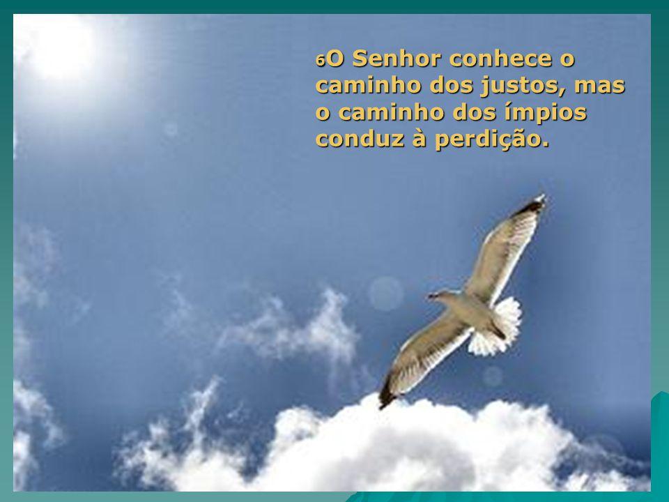 6 O Senhor conhece o caminho dos justos, mas o caminho dos ímpios conduz à perdição.