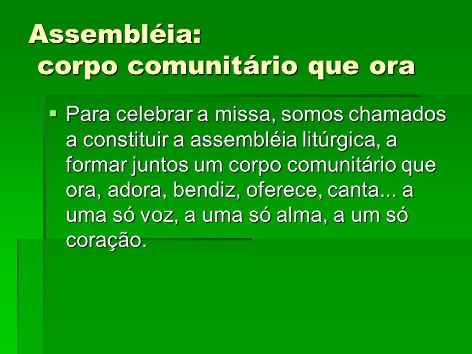 Assembléia: corpo comunitário que ora  Para celebrar a missa, somos chamados a constituir a assembléia litúrgica, a formar juntos um corpo comunitári