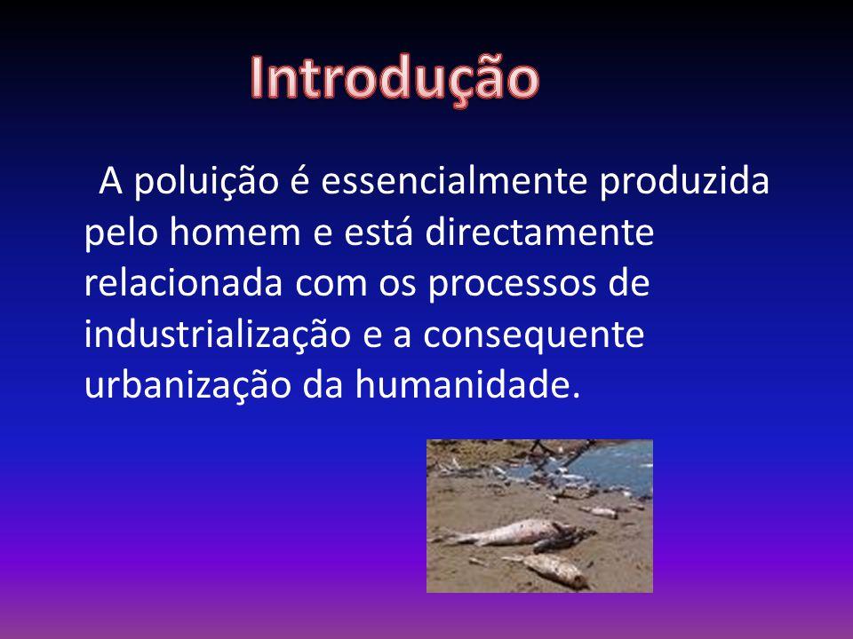 A poluição é essencialmente produzida pelo homem e está directamente relacionada com os processos de industrialização e a consequente urbanização da humanidade.