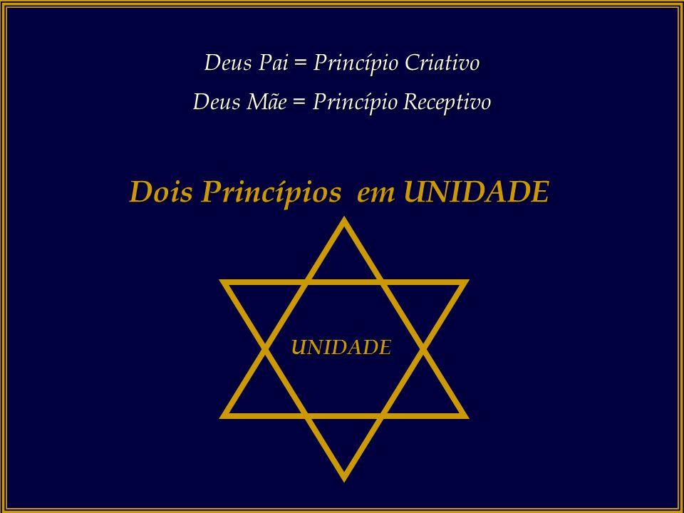 Deus Pai = Princípio Criativo Deus Mãe = Princípio Receptivo Dois Princípios em UNIDADE Princípio Masculino Princípio Feminino