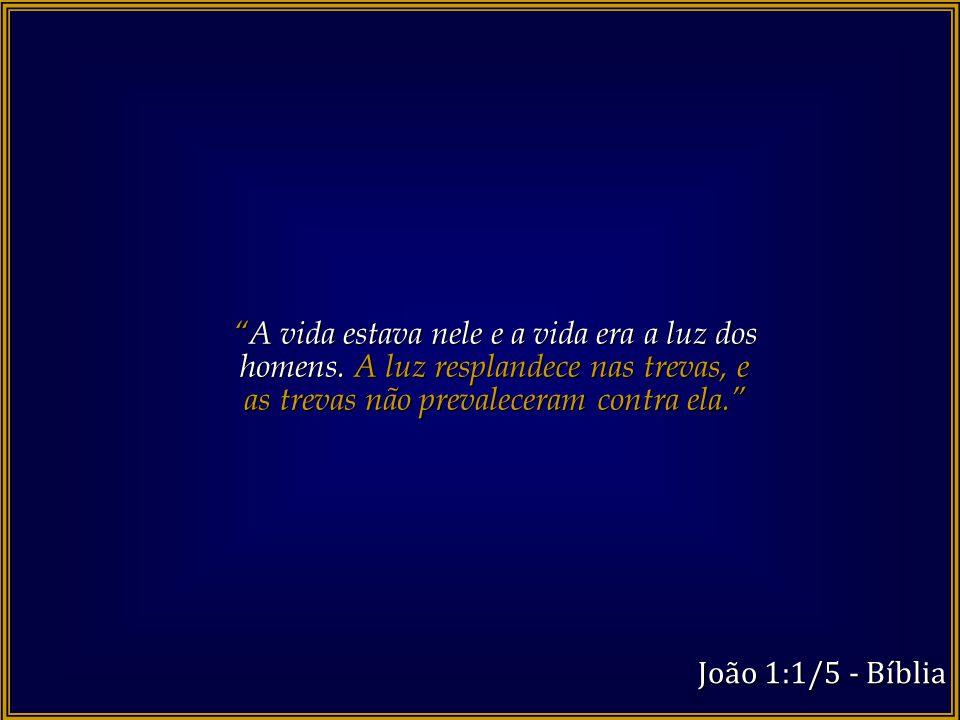 """""""Todas as coisas foram feitas por intermédio dele, e, sem ele, nada do que foi feito se fez. """" João 1:1/5 - Bíblia"""