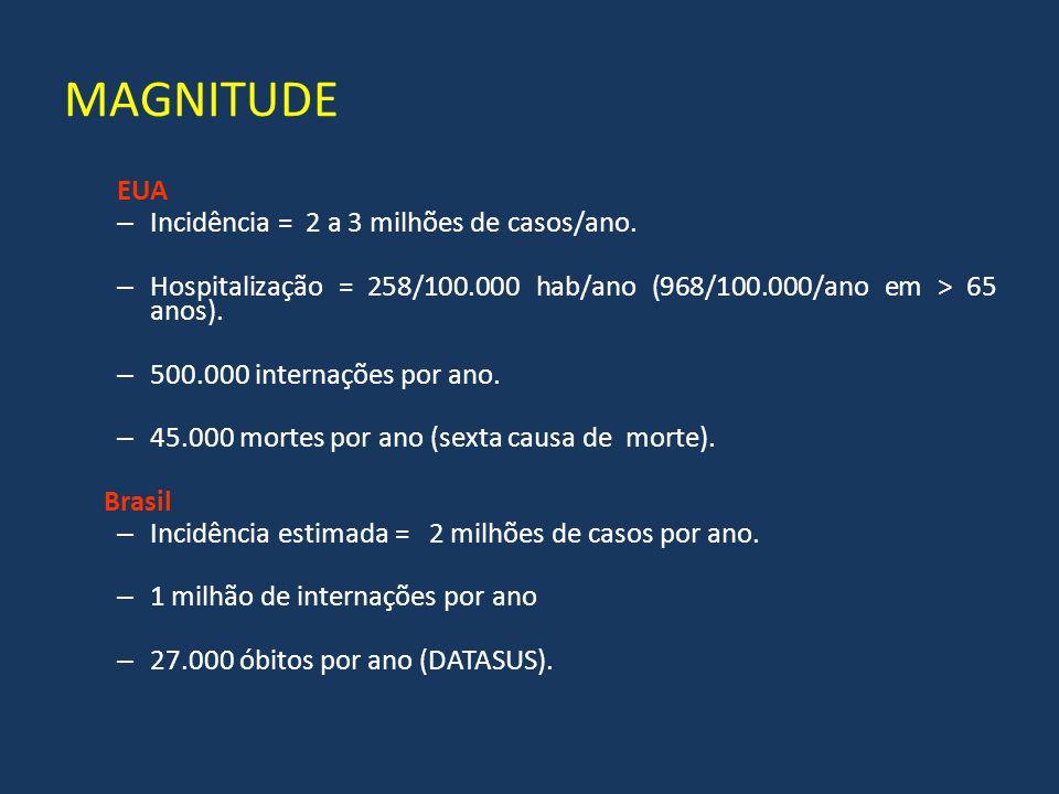 MAGNITUDE EUA – Incidência = 2 a 3 milhões de casos/ano. – Hospitalização = 258/100.000 hab/ano (968/100.000/ano em > 65 anos). – 500.000 internações