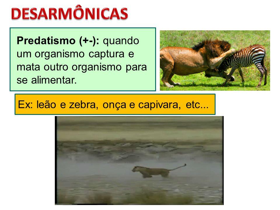 Predatismo (+-): quando um organismo captura e mata outro organismo para se alimentar. Ex: leão e zebra, onça e capivara, etc...