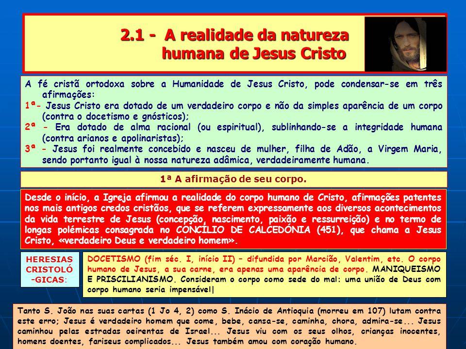 2.1 - A realidade da natureza humana de Jesus Cristo A fé cristã ortodoxa sobre a Humanidade de Jesus Cristo, pode condensar-se em três afirmações: 1ª- Jesus Cristo era dotado de um verdadeiro corpo e não da simples aparência de um corpo (contra o docetismo e gnósticos); 2ª - Era dotado de alma racional (ou espiritual), sublinhando-se a integridade humana (contra arianos e apolinaristas); 3ª - Jesus foi realmente concebido e nasceu de mulher, filha de Adão, a Virgem Maria, sendo portanto igual à nossa natureza adâmica, verdadeiramente humana.