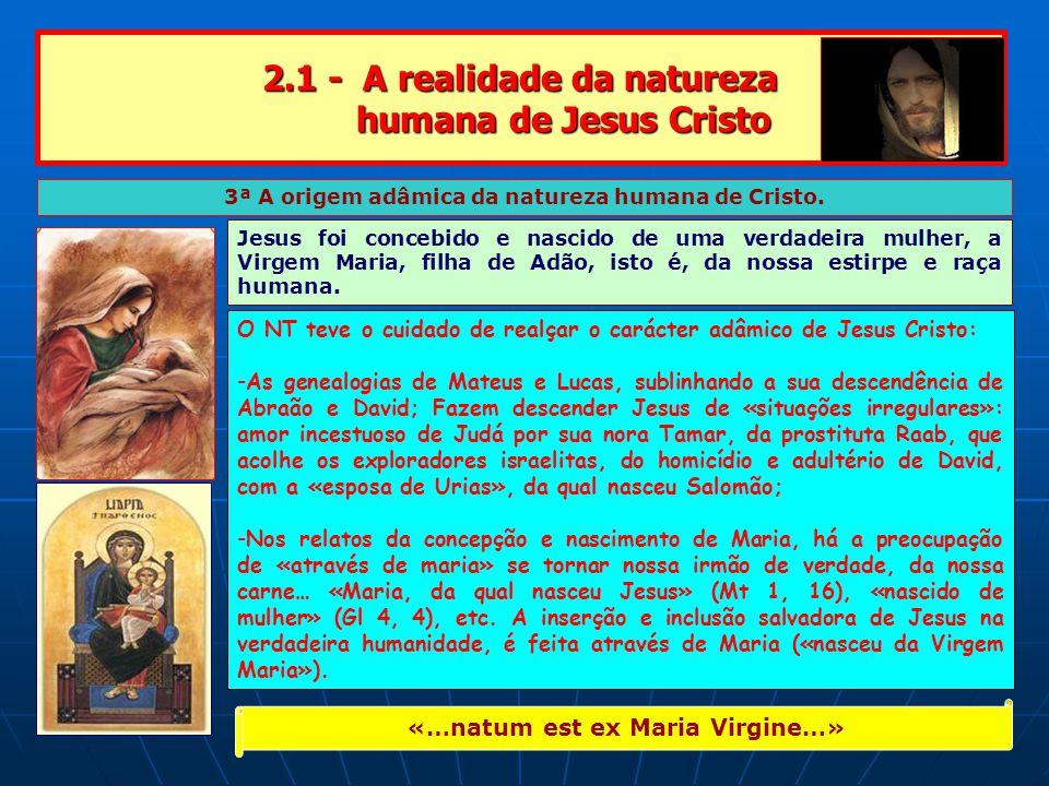 2.1 - A realidade da natureza humana de Jesus Cristo 3ª A origem adâmica da natureza humana de Cristo.