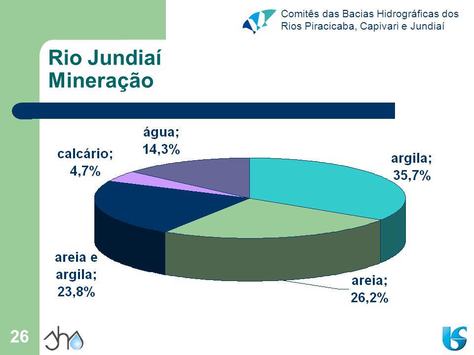 Comitês das Bacias Hidrográficas dos Rios Piracicaba, Capivari e Jundiaí 27 Rio Jundiaí Trechos críticos IAP (abastecimento público): em 2004, o Rio Jundiaí apresentou qualidade ruim em parte de sua extensão; IAP (abastecimento público): em 2004, a foz do Rio Jundiaí apresentou qualidade péssima; O Rio Jundiaí se inclui na categoria mesotrófico; O trecho do Rio Jundiaí enquadrado na Classe 4 apresenta entre os pontos JUNA 04150 e JUNA 04200 quase que ausência completa de OD e elevados valores médios de DBO 5,20 ; Conflito demanda x oferta d`água em quantidade em Jundiaí / Varzea Paulista / Campo Limpo Paulista; Piora acentuada da qualidade das águas do Ribeirão Piraí no trecho a jusante de Cabreúva (ponto IRIS02250).