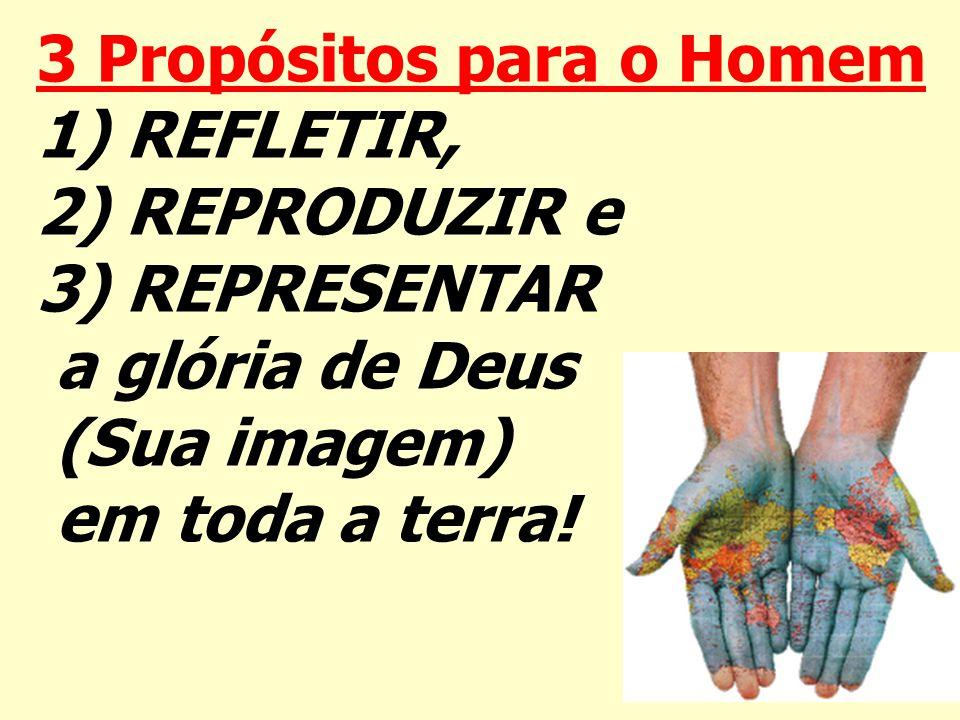 3 Propósitos para o Homem 1) REFLETIR, 2) REPRODUZIR e 3) REPRESENTAR a glória de Deus (Sua imagem) em toda a terra!