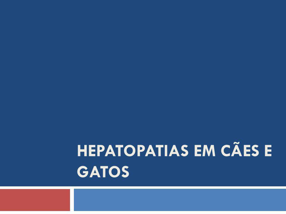 HEPATOPATIAS EM CÃES E GATOS
