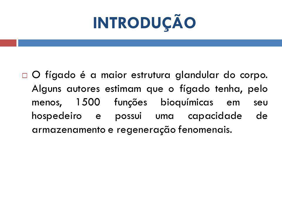 INTRODUÇÃO  O fígado é a maior estrutura glandular do corpo.
