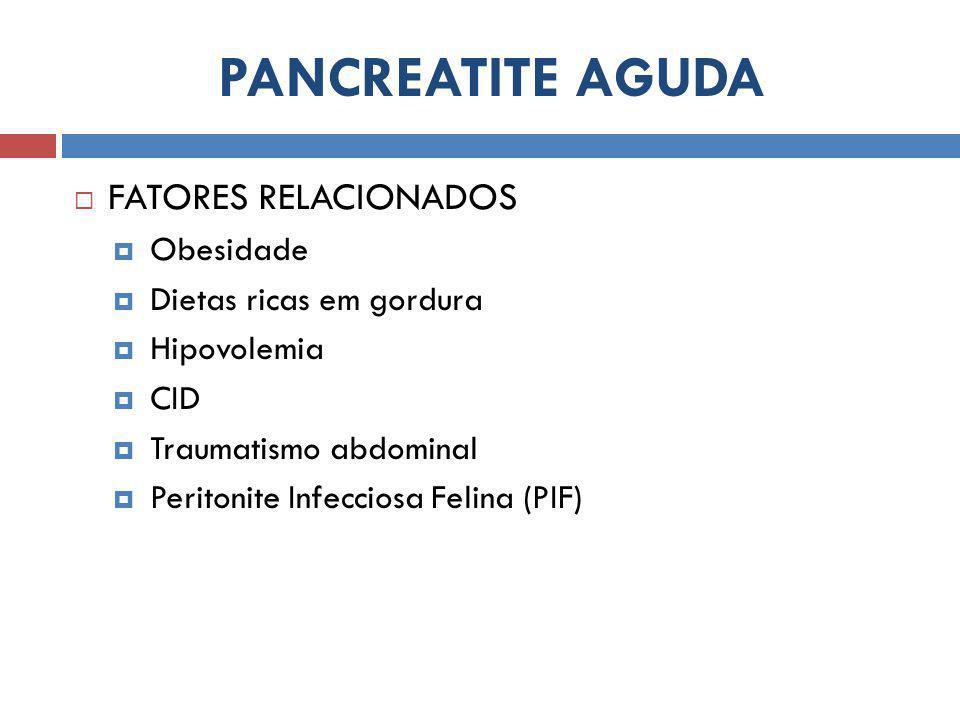 PANCREATITE AGUDA  FATORES RELACIONADOS  Obesidade  Dietas ricas em gordura  Hipovolemia  CID  Traumatismo abdominal  Peritonite Infecciosa Felina (PIF)