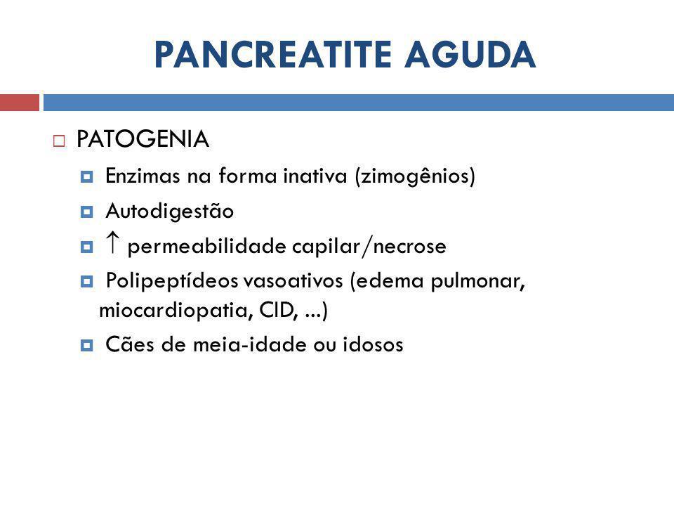 PANCREATITE AGUDA  PATOGENIA  Enzimas na forma inativa (zimogênios)  Autodigestão   permeabilidade capilar/necrose  Polipeptídeos vasoativos (edema pulmonar, miocardiopatia, CID,...)  Cães de meia-idade ou idosos