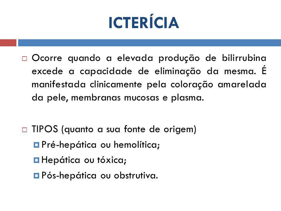 ICTERÍCIA  Ocorre quando a elevada produção de bilirrubina excede a capacidade de eliminação da mesma. É manifestada clinicamente pela coloração amar