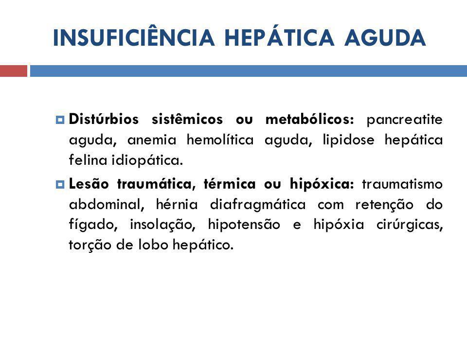 INSUFICIÊNCIA HEPÁTICA AGUDA  Distúrbios sistêmicos ou metabólicos: pancreatite aguda, anemia hemolítica aguda, lipidose hepática felina idiopática.