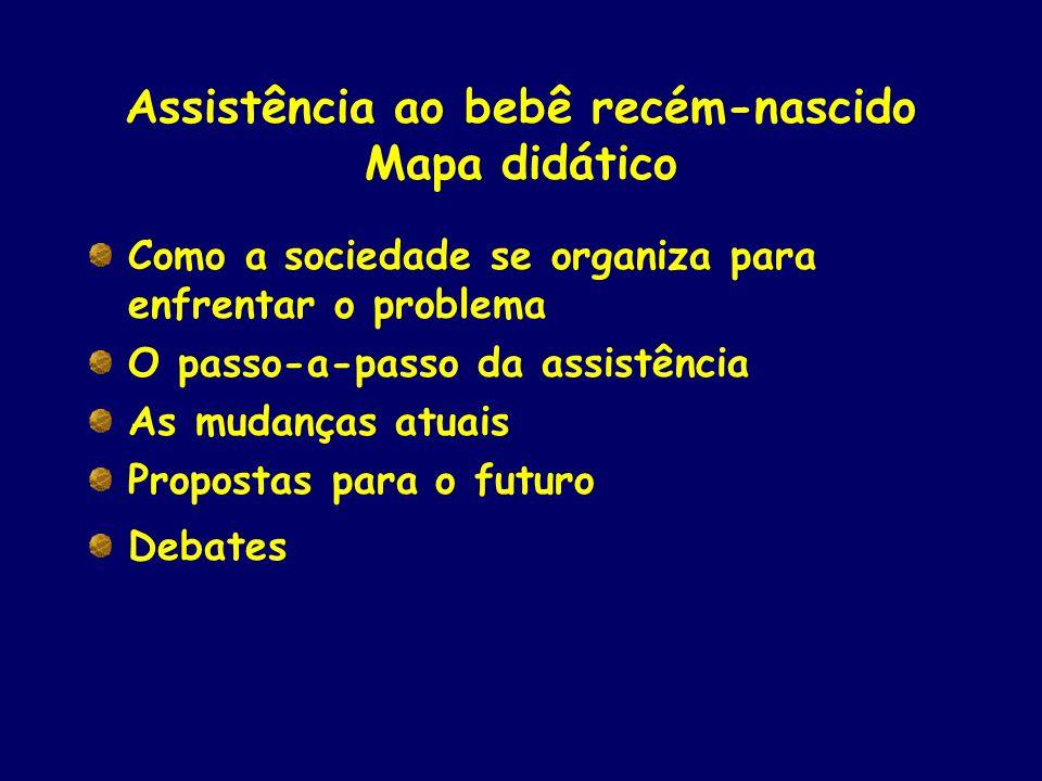 Assistência ao bebê recém-nascido Mapa didático Como a sociedade se organiza para enfrentar o problema O passo-a-passo da assistência As mudanças atua