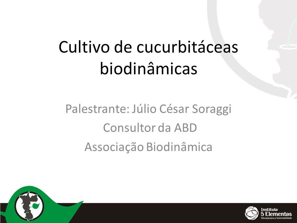 Cultivo de cucurbitáceas biodinâmicas Palestrante: Júlio César Soraggi Consultor da ABD Associação Biodinâmica