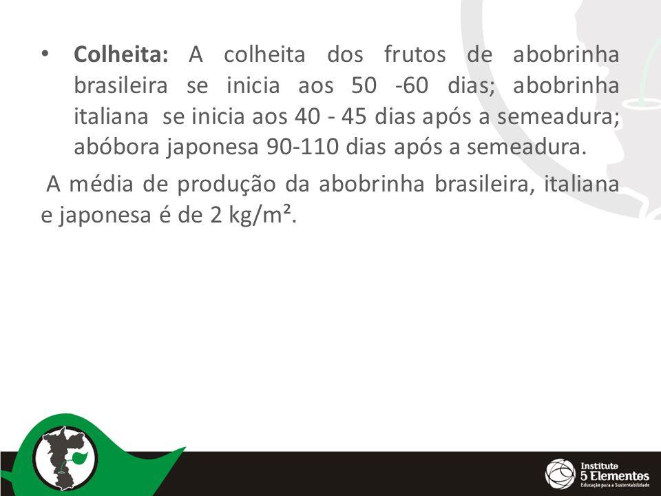 Colheita: A colheita dos frutos de abobrinha brasileira se inicia aos 50 -60 dias; abobrinha italiana se inicia aos 40 - 45 dias após a semeadura; abóbora japonesa 90-110 dias após a semeadura.