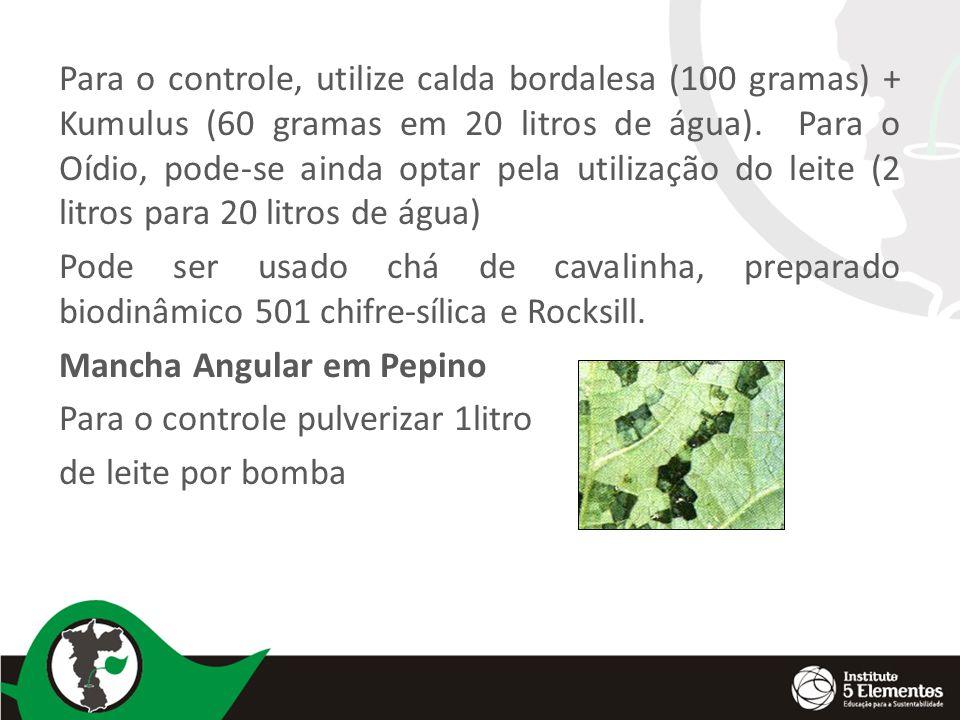 Para o controle, utilize calda bordalesa (100 gramas) + Kumulus (60 gramas em 20 litros de água).