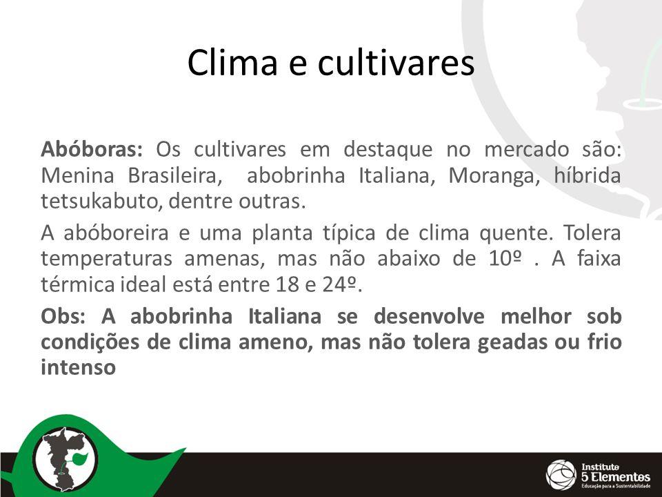Clima e cultivares Abóboras: Os cultivares em destaque no mercado são: Menina Brasileira, abobrinha Italiana, Moranga, híbrida tetsukabuto, dentre outras.