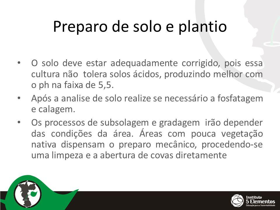 Preparo de solo e plantio O solo deve estar adequadamente corrigido, pois essa cultura não tolera solos ácidos, produzindo melhor com o ph na faixa de 5,5.