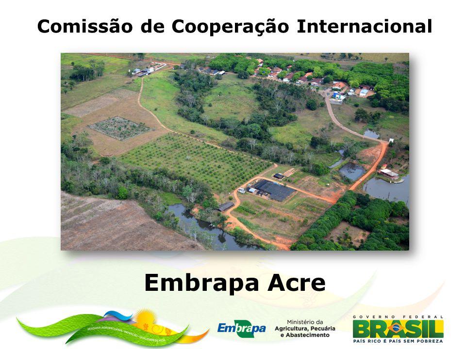 Comissão de Cooperação Internacional Embrapa Acre