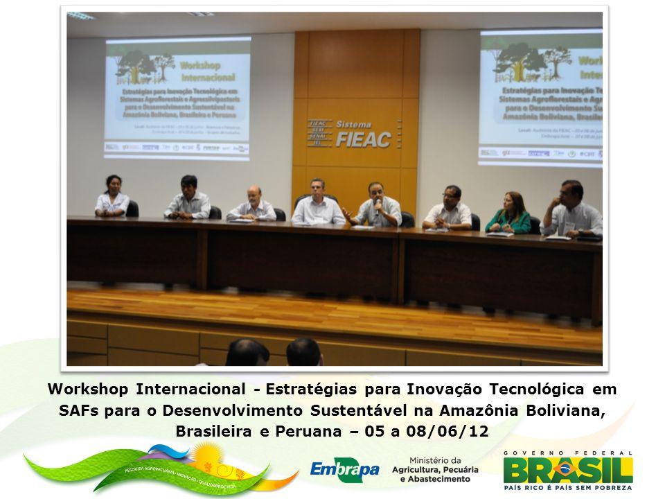 Workshop Internacional - Estratégias para Inovação Tecnológica em SAFs para o Desenvolvimento Sustentável na Amazônia Boliviana, Brasileira e Peruana – 05 a 08/06/12