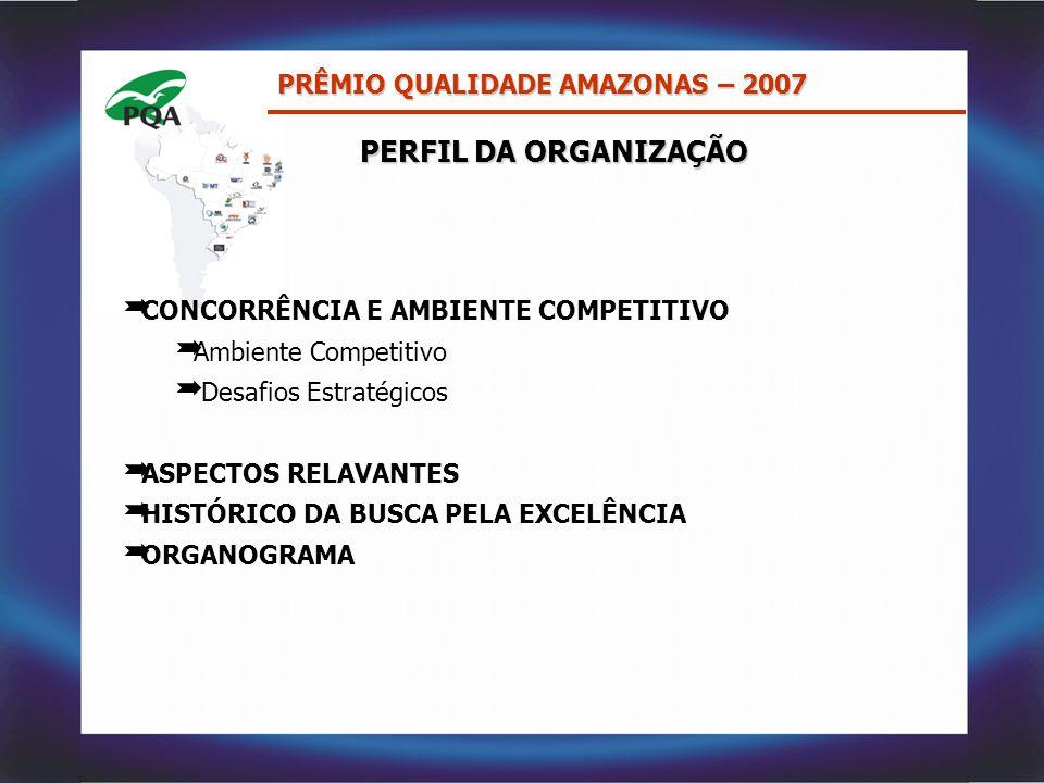 PERFIL DA ORGANIZAÇÃO  CONCORRÊNCIA E AMBIENTE COMPETITIVO  Ambiente Competitivo  Desafios Estratégicos  ASPECTOS RELAVANTES  HISTÓRICO DA BUSCA