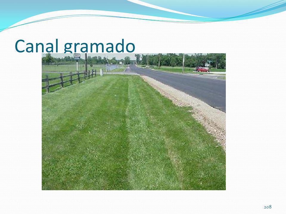 Vários tipos de gramas usados no Brasil 207