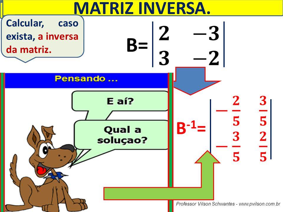 Professor Vilson Schwantes - www.pvilson.com.br MATRIZ INVERSA. Calcular, caso exista, a inversa da matriz.