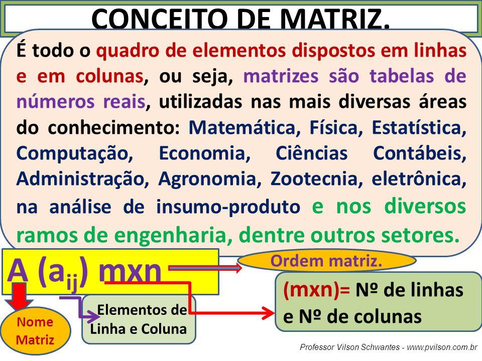 Professor Vilson Schwantes - www.pvilson.com.br CONCEITO DE MATRIZ. É todo o quadro de elementos dispostos em linhas e em colunas, ou seja, matrizes s