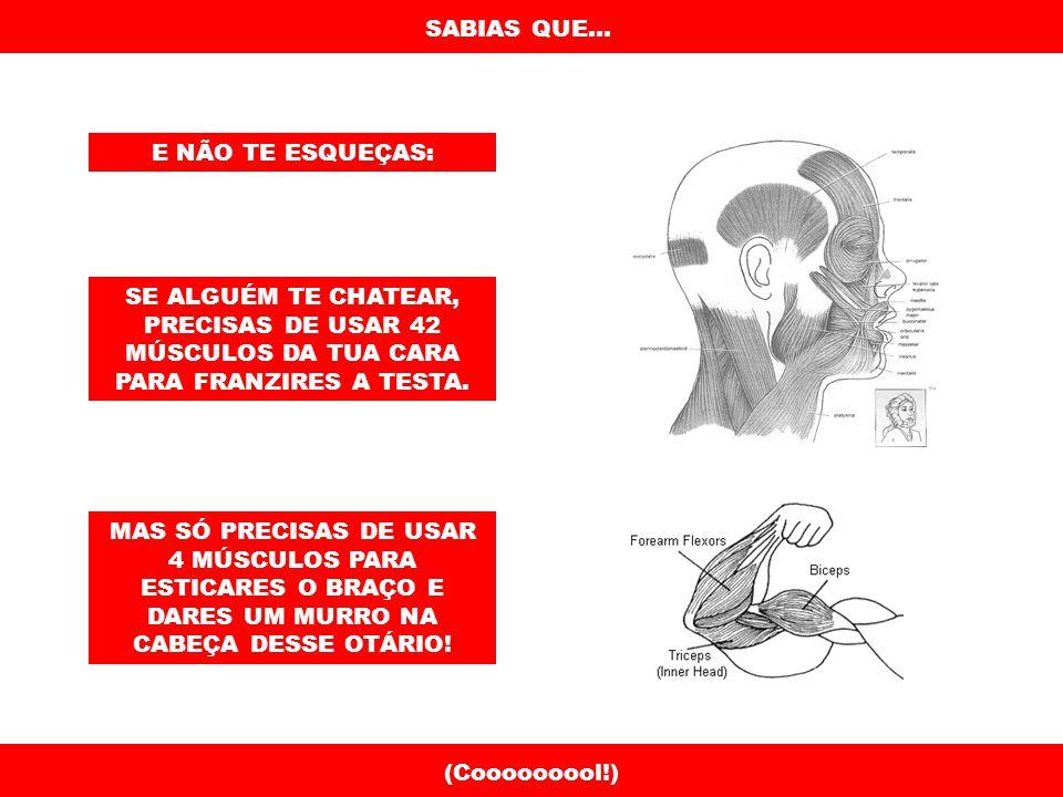SABIAS QUE...