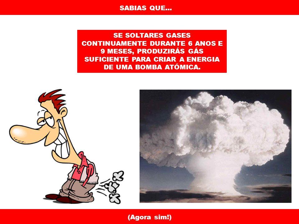 SABIAS QUE... A BARATA CONSEGUE SOBREVIVER 9 DIAS SEM A CABEÇA. (Arghhh!!!)