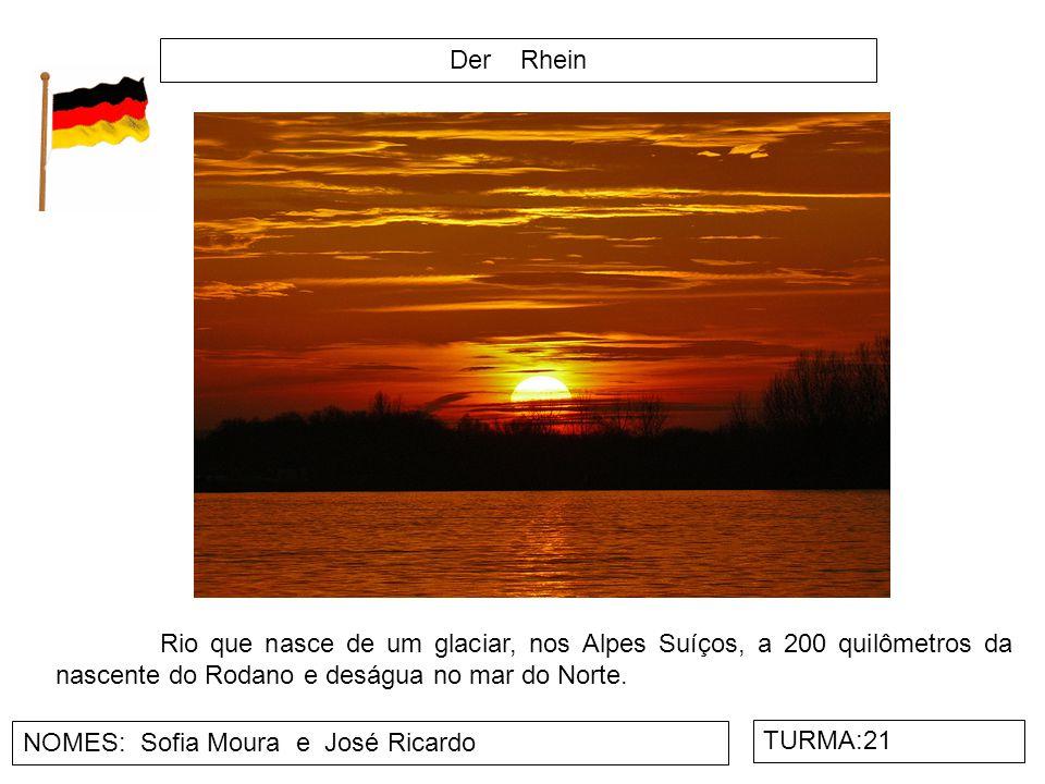 Der Rhein NOMES: Sofia Moura e José Ricardo TURMA:21 Rio que nasce de um glaciar, nos Alpes Suíços, a 200 quilômetros da nascente do Rodano e deságua