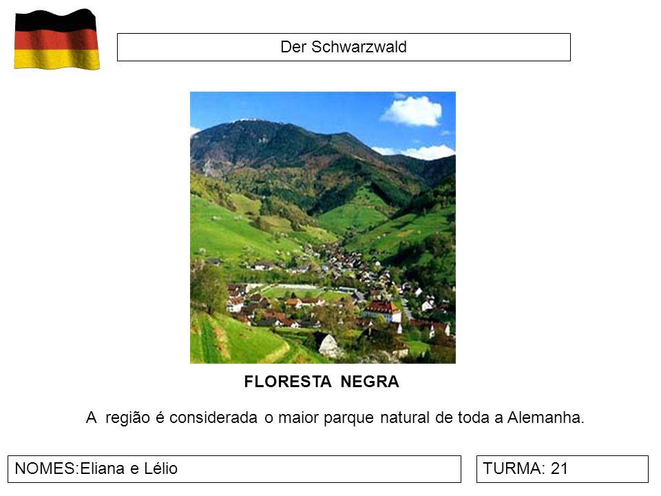 Der Schwarzwald NOMES:Eliana e LélioTURMA: 21 A região é considerada o maior parque natural de toda a Alemanha. FLORESTA NEGRA