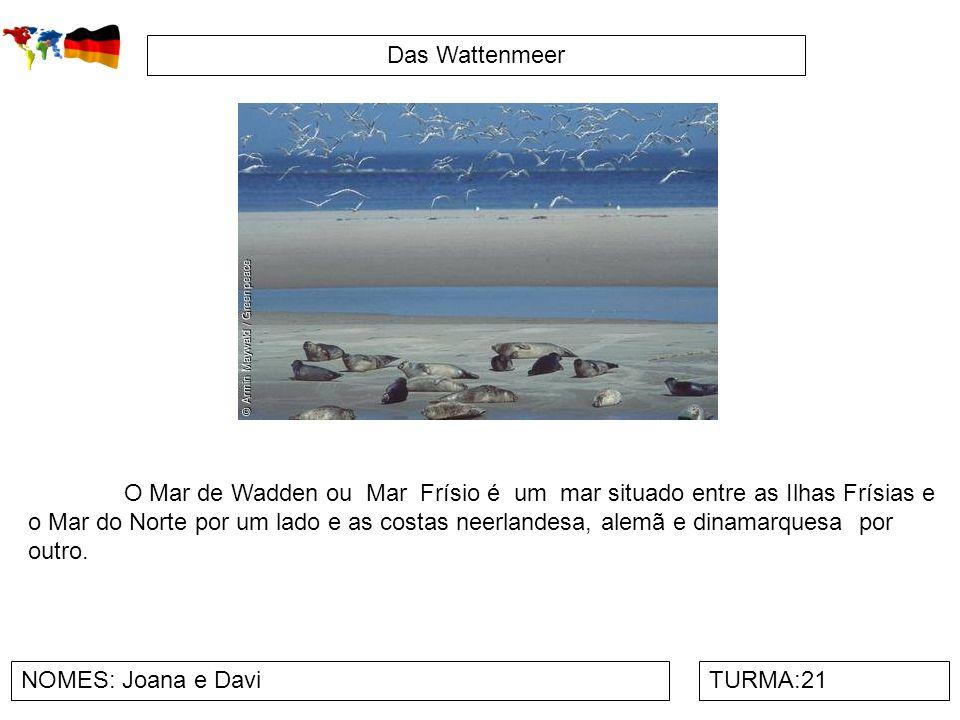 Das Wattenmeer NOMES: Joana e DaviTURMA:21 O Mar de Wadden ou Mar Frísio é um mar situado entre as Ilhas Frísias e o Mar do Norte por um lado e as cos