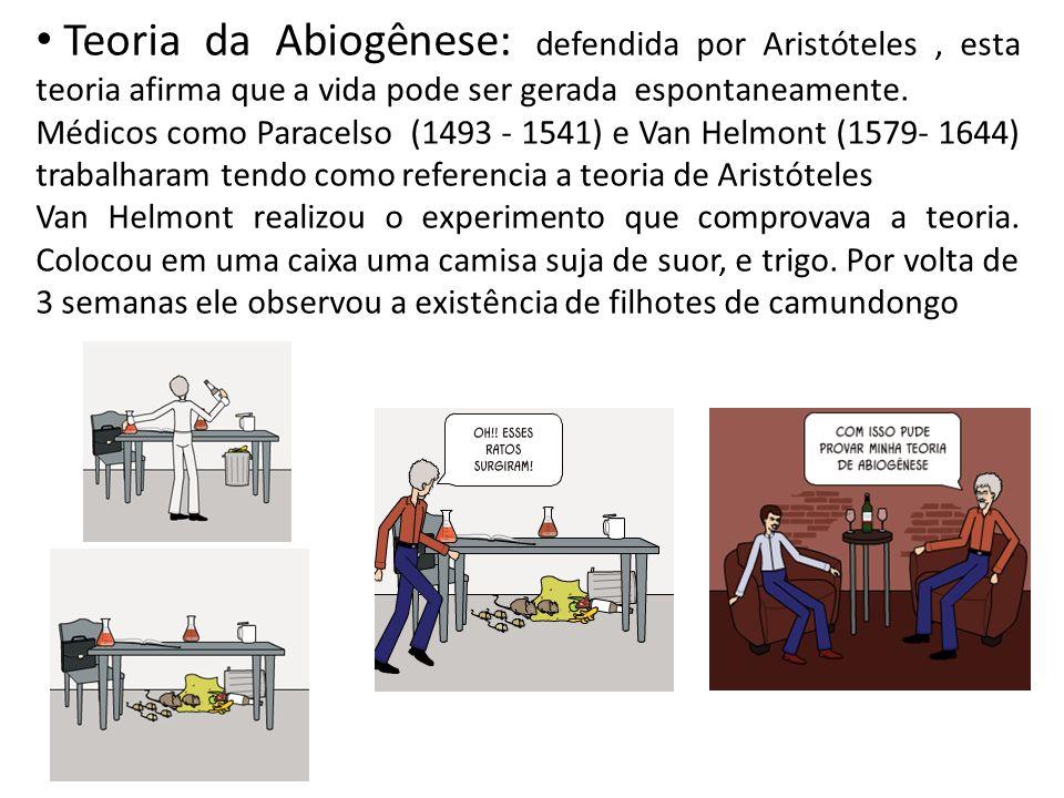 Teoria da Abiogênese: defendida por Aristóteles, esta teoria afirma que a vida pode ser gerada espontaneamente.