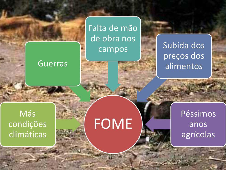 FOME Más condições climáticas Guerras Falta de mão de obra nos campos Subida dos preços dos alimentos Péssimos anos agrícolas