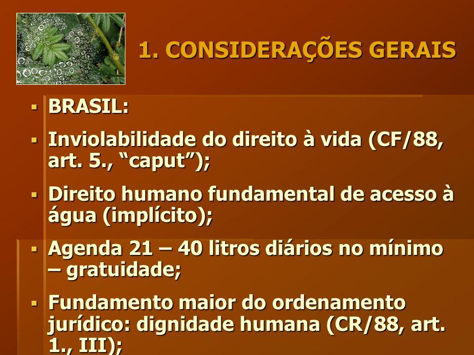 1. CONSIDERAÇÕES GERAIS  BRASIL:  Inviolabilidade do direito à vida (CF/88, art.
