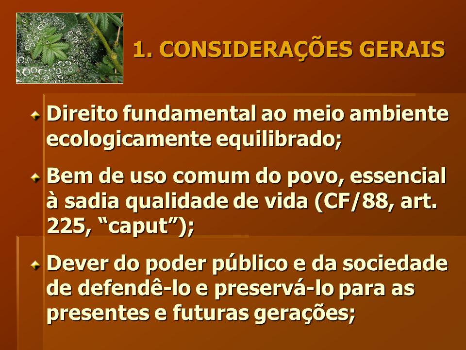 1. CONSIDERAÇÕES GERAIS Direito fundamental ao meio ambiente ecologicamente equilibrado; Bem de uso comum do povo, essencial à sadia qualidade de vida