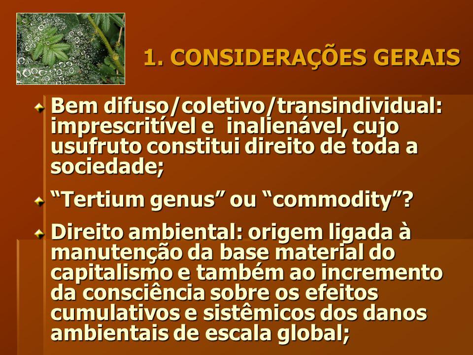 """1. CONSIDERAÇÕES GERAIS Bem difuso/coletivo/transindividual: imprescritível e inalienável, cujo usufruto constitui direito de toda a sociedade; """"Terti"""
