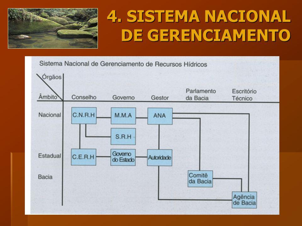 4. SISTEMA NACIONAL DE GERENCIAMENTO