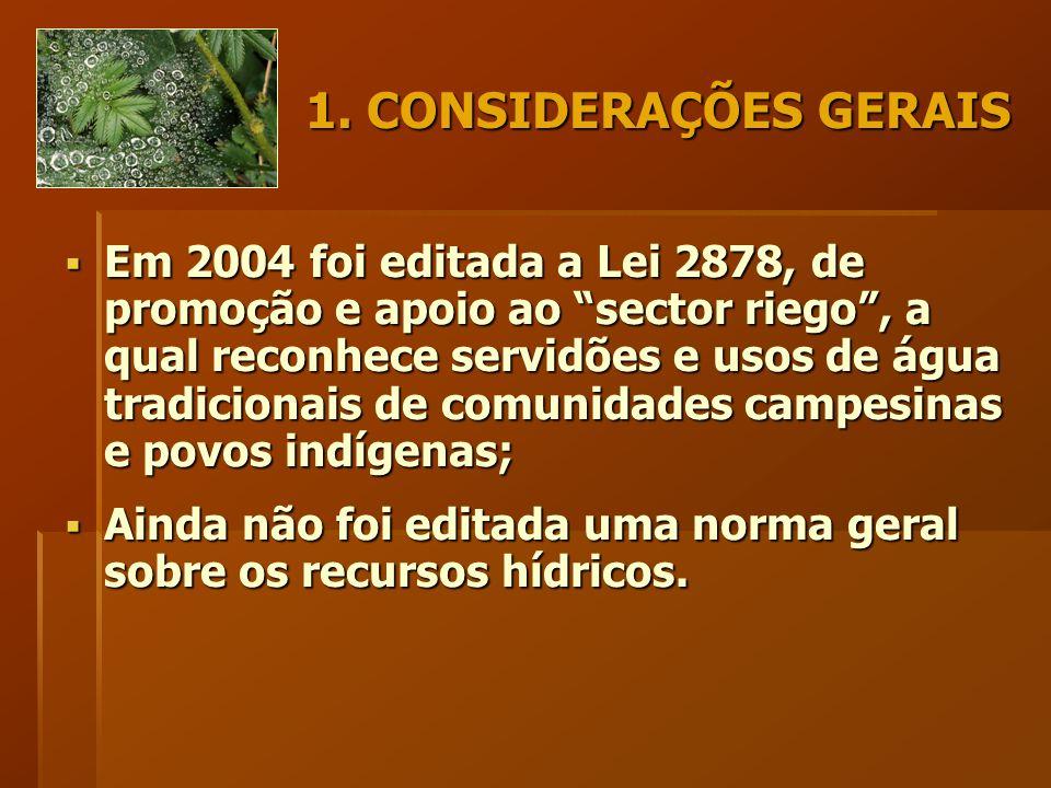 """1. CONSIDERAÇÕES GERAIS  Em 2004 foi editada a Lei 2878, de promoção e apoio ao """"sector riego"""", a qual reconhece servidões e usos de água tradicionai"""