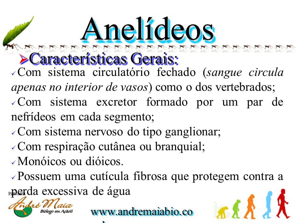 www.andremaiabio.co m.br MinhocasMinhocas