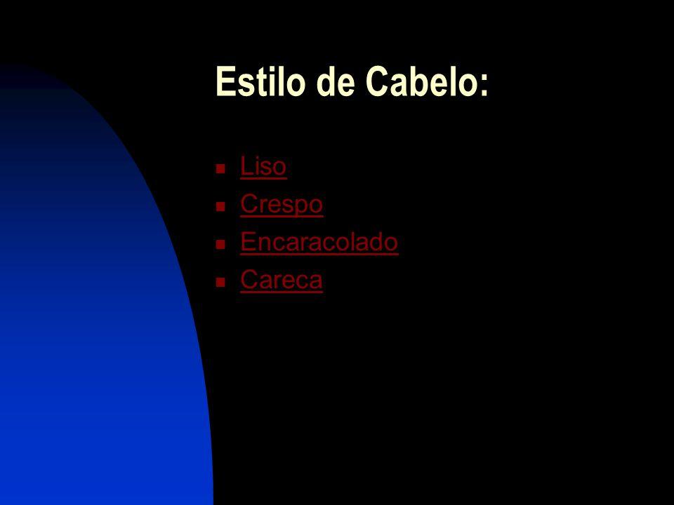 Estilo de Cabelo: Liso Crespo Encaracolado Careca