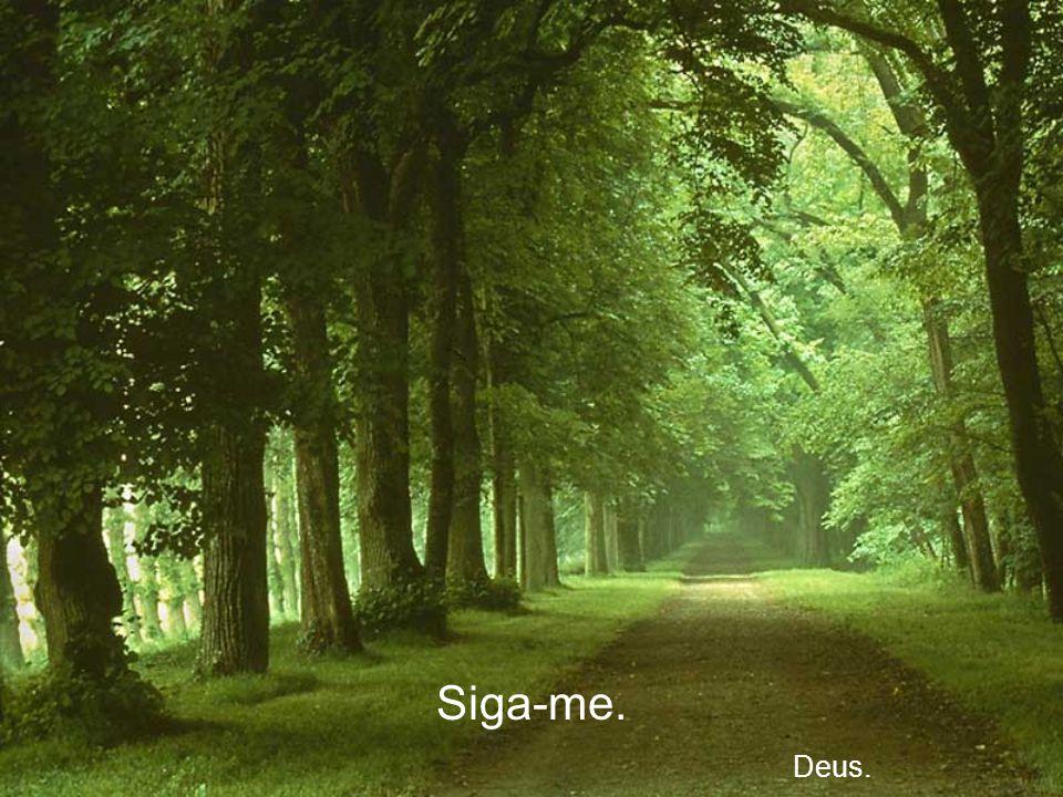 O caminho que você escolheu... Quer levar-me junto com você Deus.